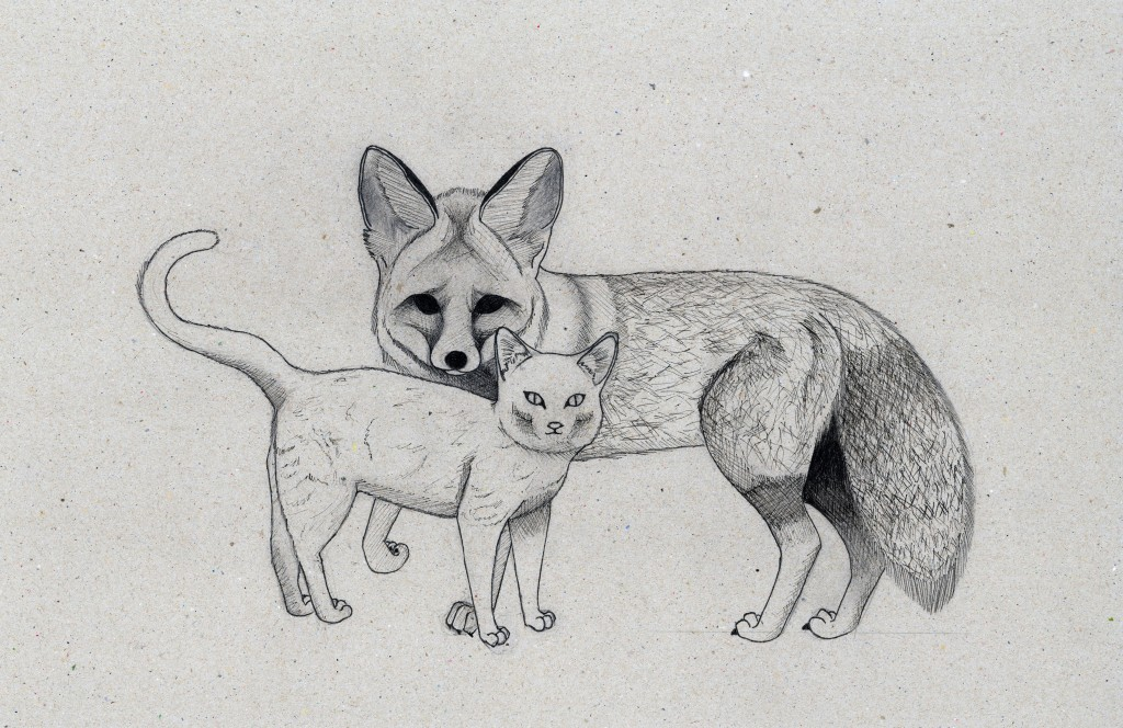 Illustration of a fox and a cat